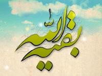 چگونه در زندگی خودمان در خدمت امام زمان(عجل الله فرجه) باشیم؟
