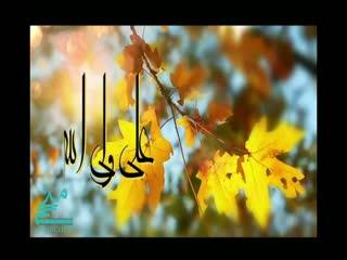 علی جان و علی حسن و علی قلب